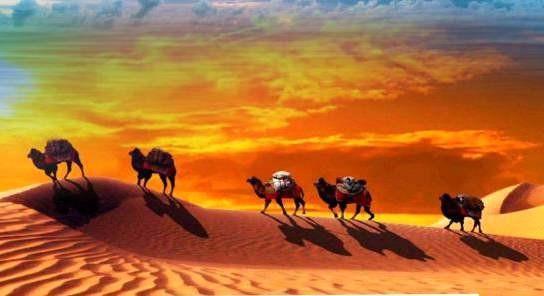 暑假壶口瀑布、鄂尔多斯草原、库不齐沙漠、响沙湾自驾之旅8日游